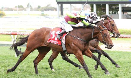 Maher has Bons Away in Sir Rupert Clarke Stakes before beginning suspension
