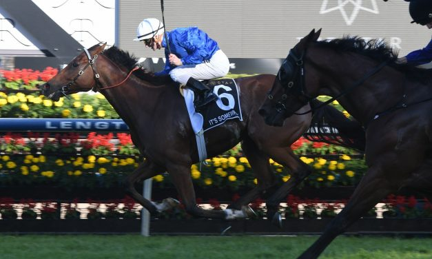 It's Somewhat to make 1st Spring appearance in Sir Rupert Clarke Stakes