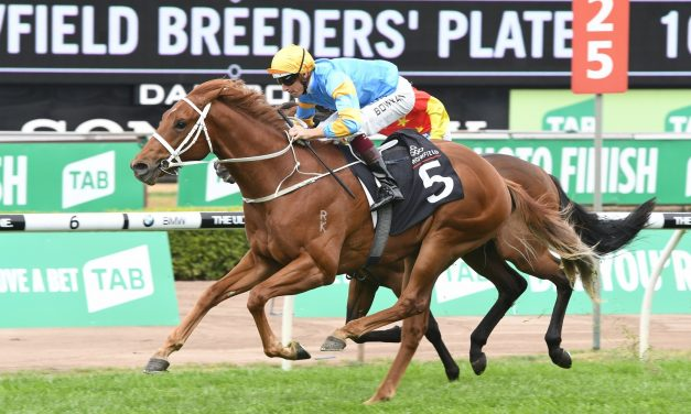 Performer stole the show to win the 2017 Breeders' Plate