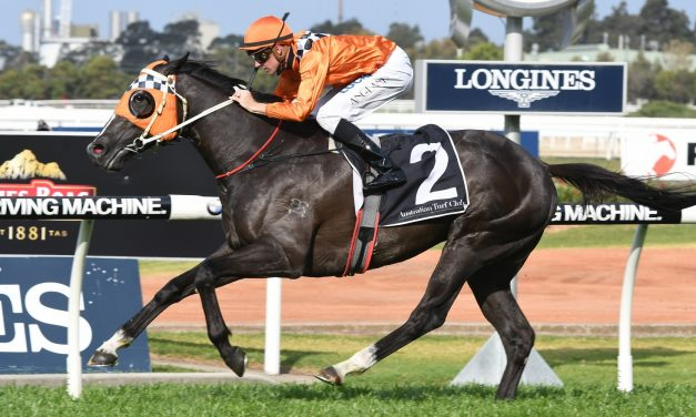 Tangled had straight forward preparation for 2017 Victoria Derby