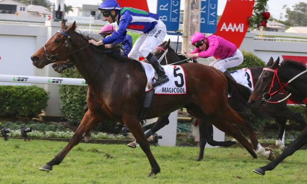 Country boys happy to take on Winx in Turnbull Stakes