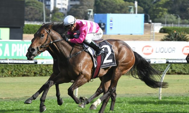 Dixie Blossoms To Myer Classic After Angst Stakes Win