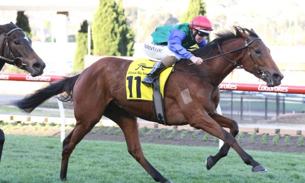 Bonneval and Hartnell headline nominations for Ladbrokes Caulfield Stakes