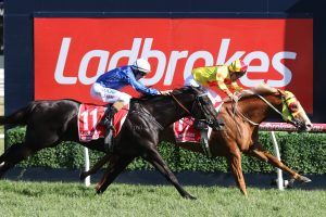 Mighty Boss recorded an upset win in the 2017 Ladbrokes Caulfield Guineas. Photo by: Ultimate Racing Photos