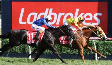 Mighty Boss Is The Ladbrokes Caulfield Guineas Winner