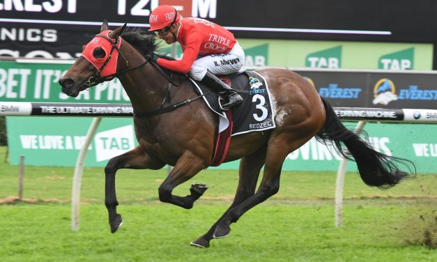 Redzel draws towards the outside in 2018 Black Caviar Lightning field