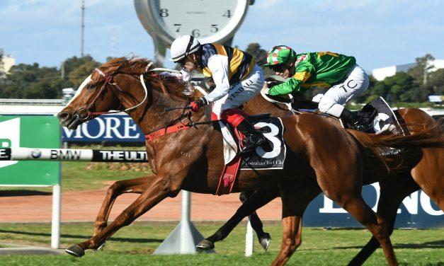 Gallic Chieftain heads the betting for 2017 Geelong Cup