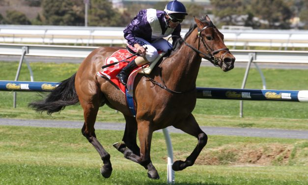 Viddora is set to peak for The Everest