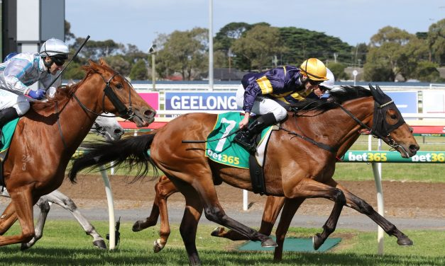 Geelong Cup winner Vengeur Masque gets 0.5kg Melbourne Cup penalty