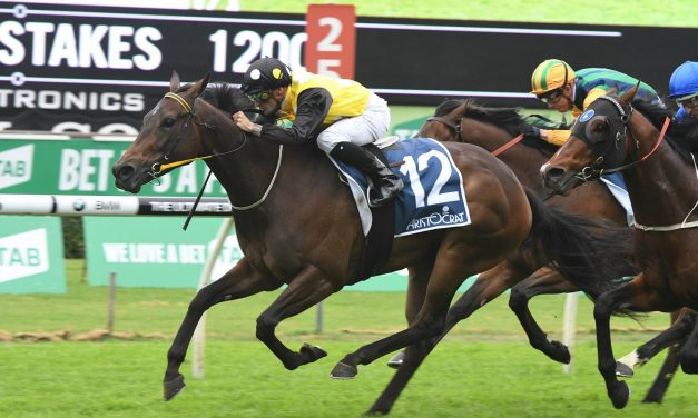 2018 TJ Smith Stakes Target for In Her Time