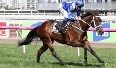 Winx plus 10 others in 2018 George Ryder Stakes nominations