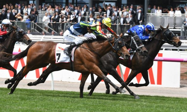 Luvaluva to have final Australian Oaks hit out in Adrian Knox Stakes