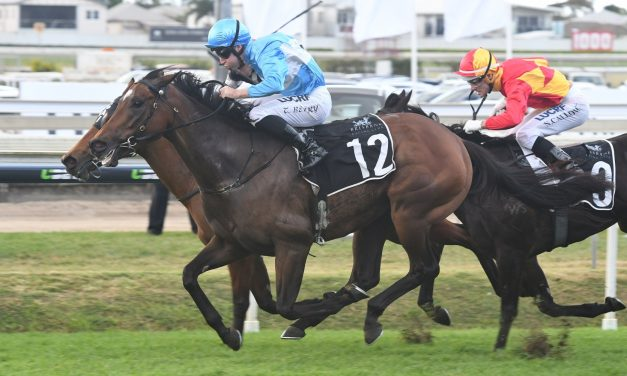2017 Matriarch Stakes Tips: Prompt Response the one to beat says Gai