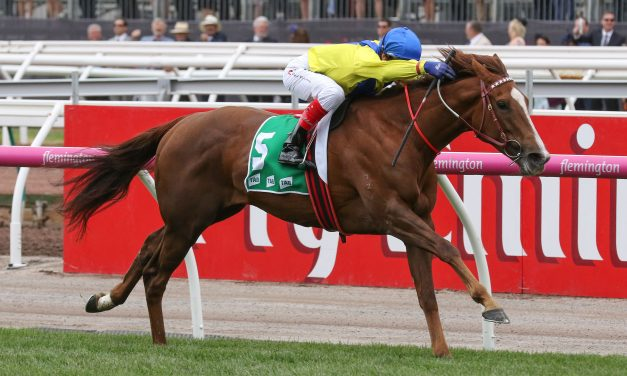 2017 Matriarch Stakes betting: The favourite Falika a late scratching