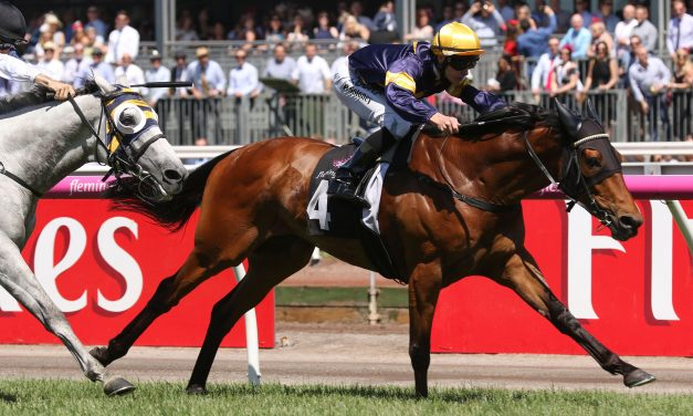 Moroney gives Vengeur Masque top 5 chance in 2018 Melbourne Cup field
