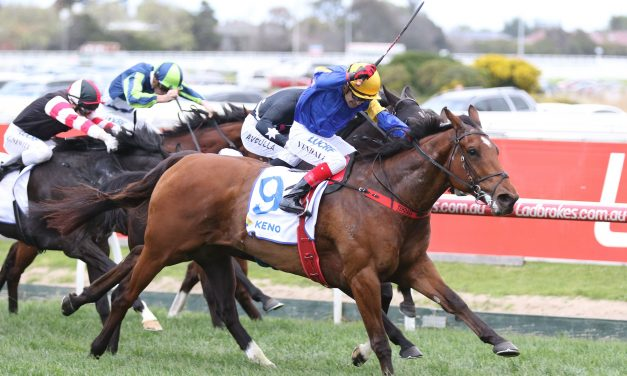Whispering Brook to set the pace with blinkers on in Winterbottom Stakes