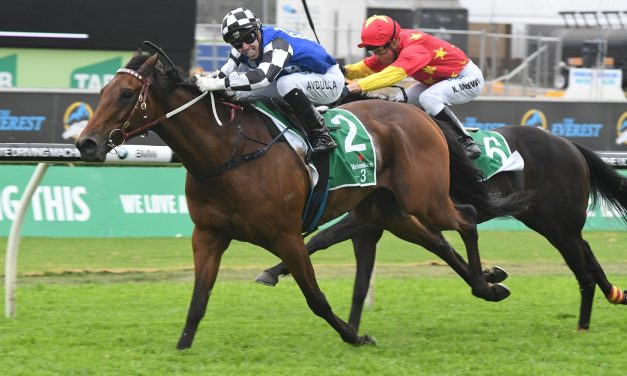 Big Duke draws outside barrier in capacity 2019 Sydney Cup field