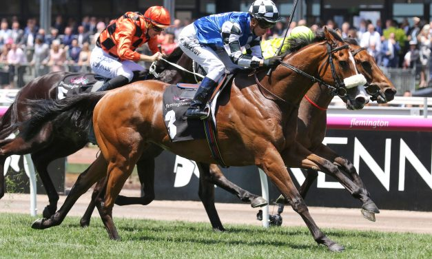 Firm track to suit Mr Garcia in Ballarat Cup