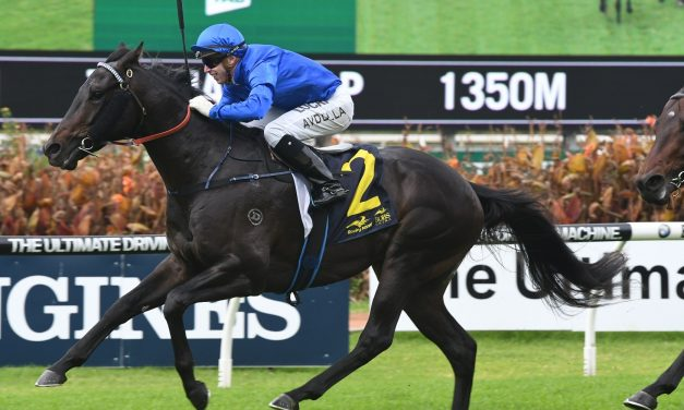 Wide barrier has Gaulois at big odds for 2017 W.A. Guineas