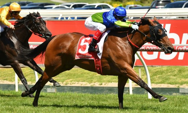 Official Winterbottom Stakes Field Features Fuhryk