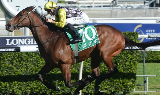 Egyptian Symbol to make her mark at Magic Millions Carnival