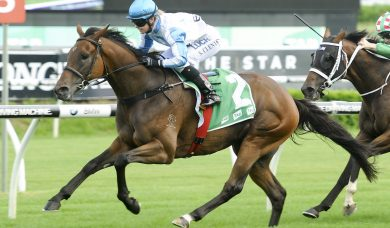 Testashadow Spot On For Villiers Stakes