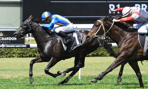 Absolutlypositivly earns a spot in Magic Millions 3yo Guineas