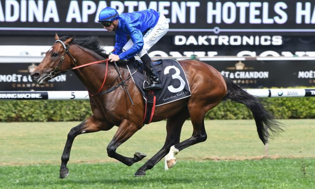 Interlocuter at his top for 2017 Villiers Stakes
