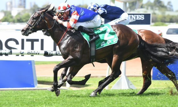 Single Bullet Takes Aim at Magic Millions Guineas