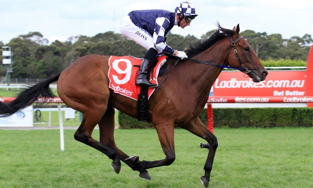 Inside Bernborough Handicap Barrier Ideal for Zahspeed