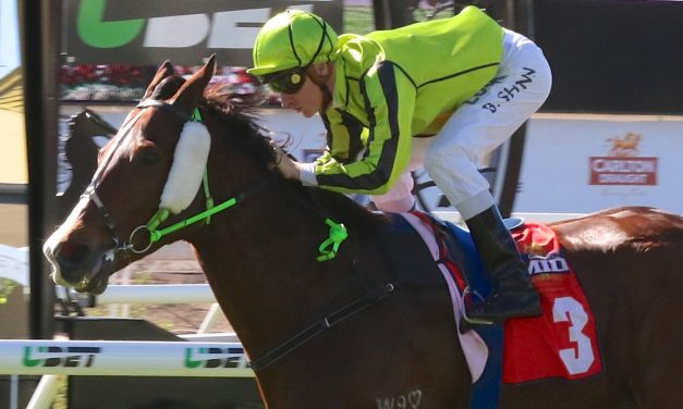 Sunshine Coast Cup Target for Flamboyer this Summer