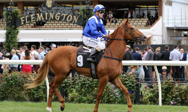 Nomothaj primed for first up assault in 2018 Magic Millions 2yo Classic
