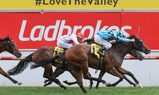 Bel Sonic Value in Magic Millions Guineas 2018 Betting