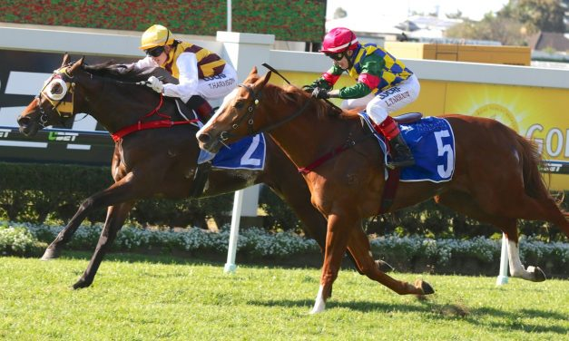 Most Important can overcome wide barrier in Magic Millions Cup