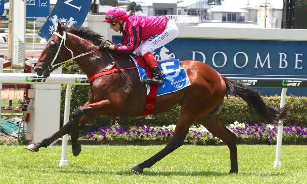 Nikitas to start in Chester Manifold Stakes