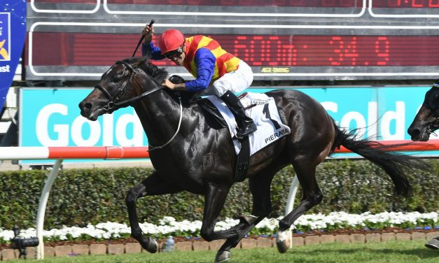 Doncaster Mile an option for 2018 Magic Millions 3yo Guineas winner Pierata