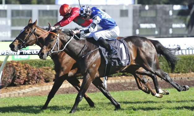 Singing in tune for hat trick in Gosford Gold Cup