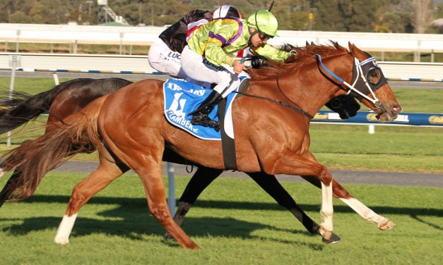 Itz Invincible to face toughest test in Kensington Stakes