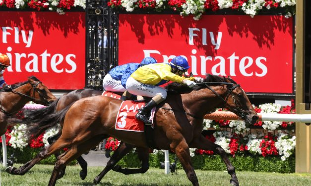 Wide barrier to suit Run Naan in C&G Blue Diamond Prelude