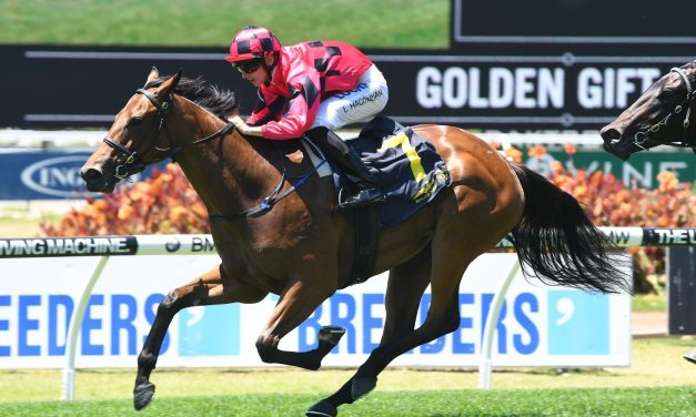 Bold Arial to wear blinkers in Widden Stakes