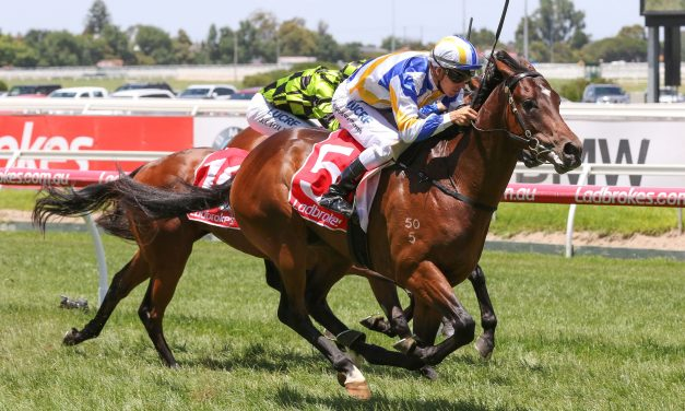 Ollivander's 2yo Program to be clearer after Blue Diamond Preview