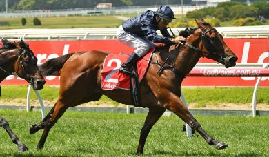Long Leaf Firms in Ladbrokes Blue Diamond Stakes Betting