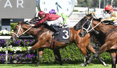 No Winx But Waller Still Wins 2018 Apollo Stakes