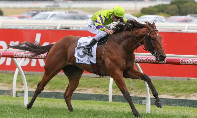 Autumn Classic winner Valiant Spirit aimed towards Australian Derby