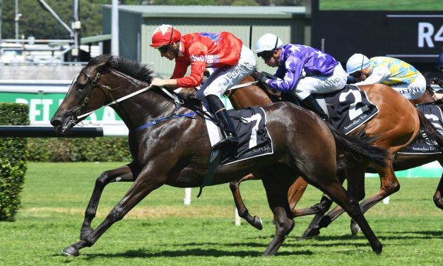 Seabrook cruising under the radar for 2018 Golden Slipper Stakes