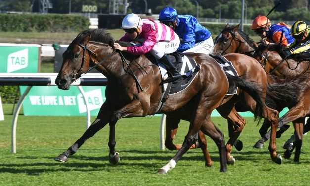 Guy Walter Stakes winner Dixie Blossoms heading towards Coolmore Classic
