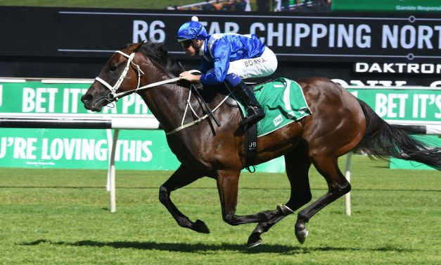 Winx to be challenged by international invitees in 2018 Cox Plate