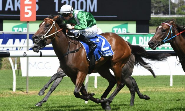 Estijaab keeps Golden Slipper chances alive with Reisling Stakes win
