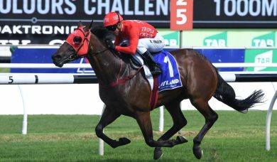 Redzel draws midfield barrier in 2018 Doomben 10,000