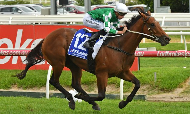 Frank Packer Plate favourite Holy Snow on Winter Carnival trial